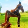 Horse Charlotte