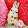 Rabbit with baby